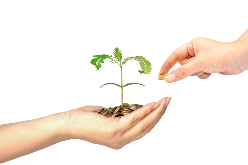 saving money iStock_000040044500_Small